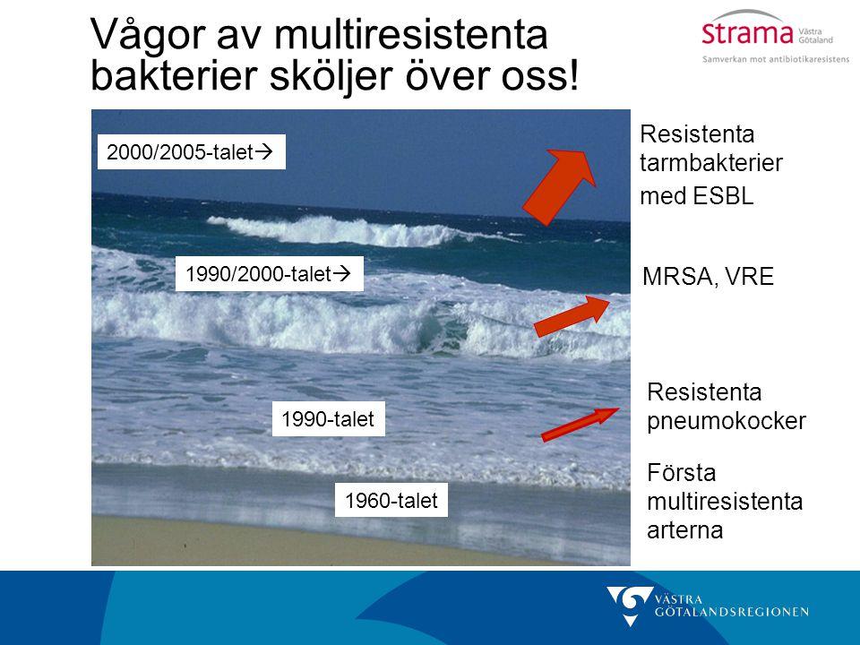 Vågor av multiresistenta bakterier sköljer över oss!