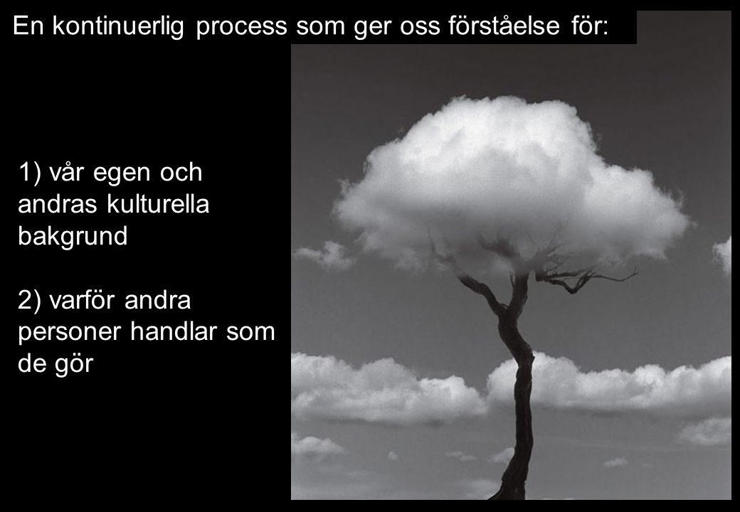 En kontinuerlig process som ger oss förståelse för: