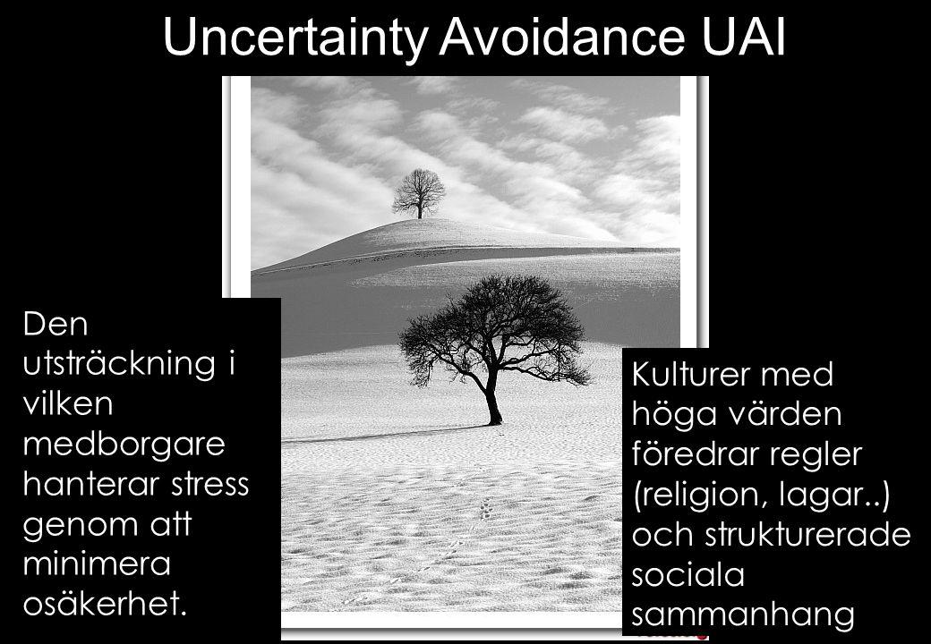Uncertainty Avoidance UAI
