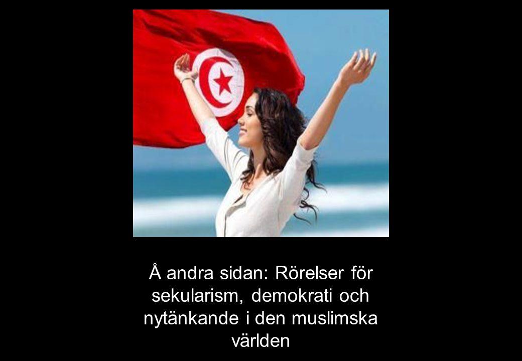 Å andra sidan: Rörelser för sekularism, demokrati och nytänkande i den muslimska världen
