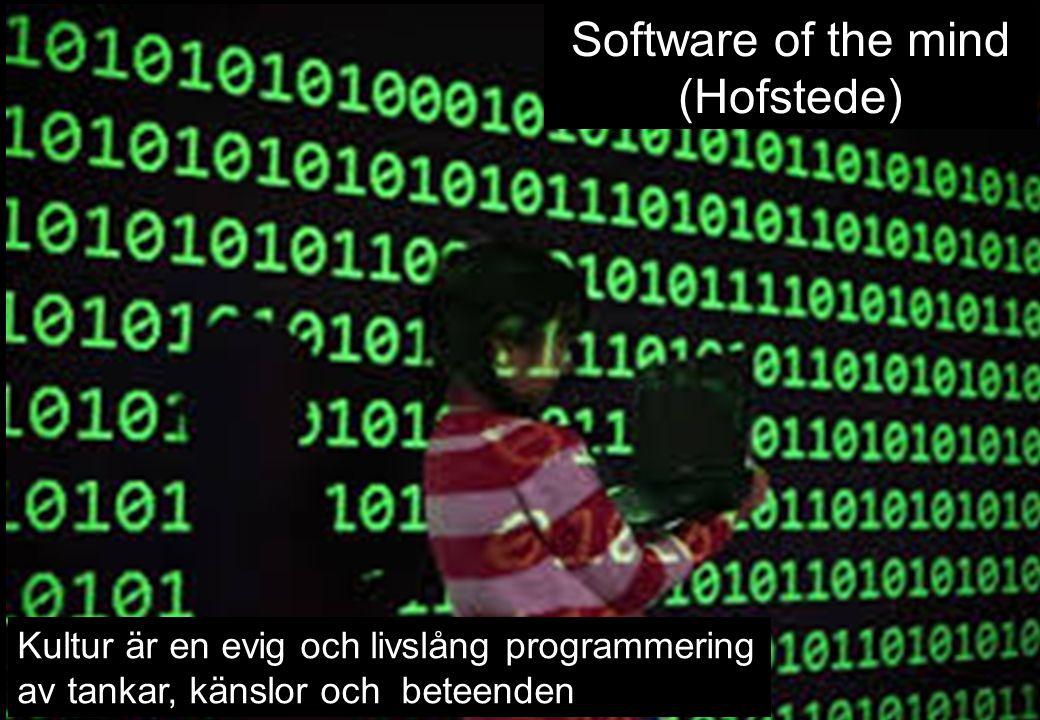 Software of the mind (Hofstede)
