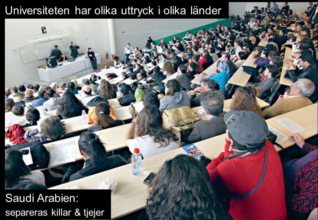 Universiteten har olika uttryck i olika länder