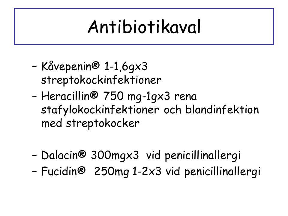 Antibiotikaval Kåvepenin® 1-1,6gx3 streptokockinfektioner