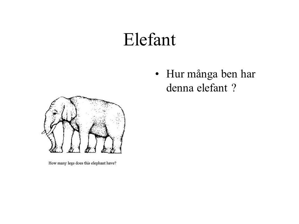 Elefant Hur många ben har denna elefant