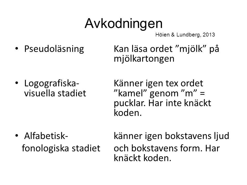 Avkodningen Höien & Lundberg, 2013