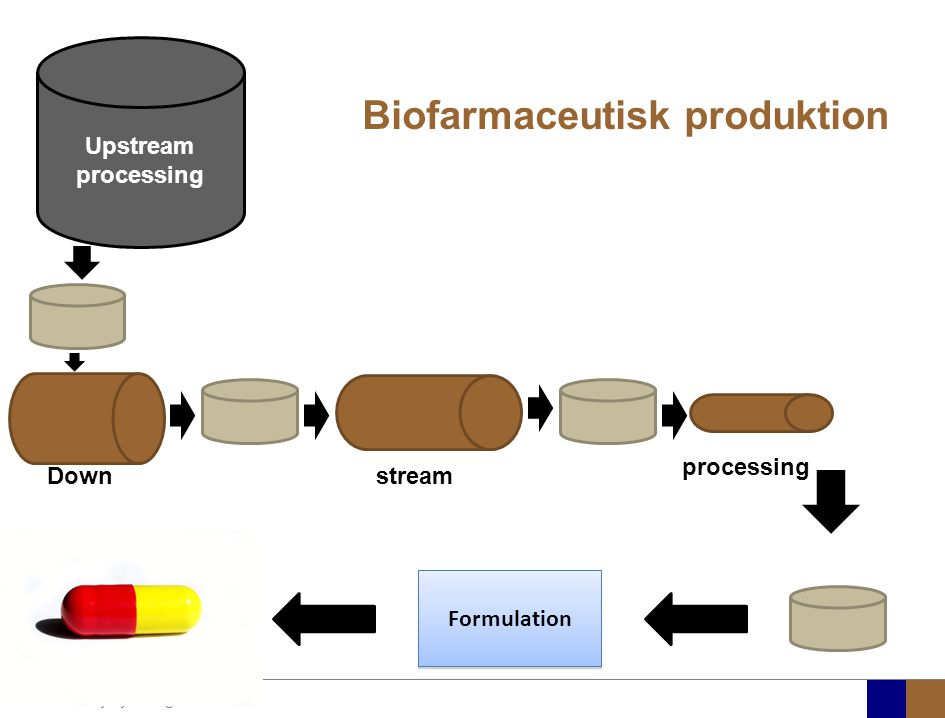 Biofarmaceutisk produktion