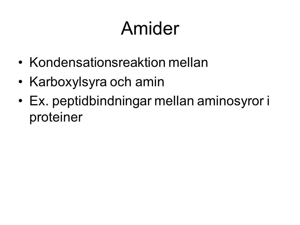 Amider Kondensationsreaktion mellan Karboxylsyra och amin