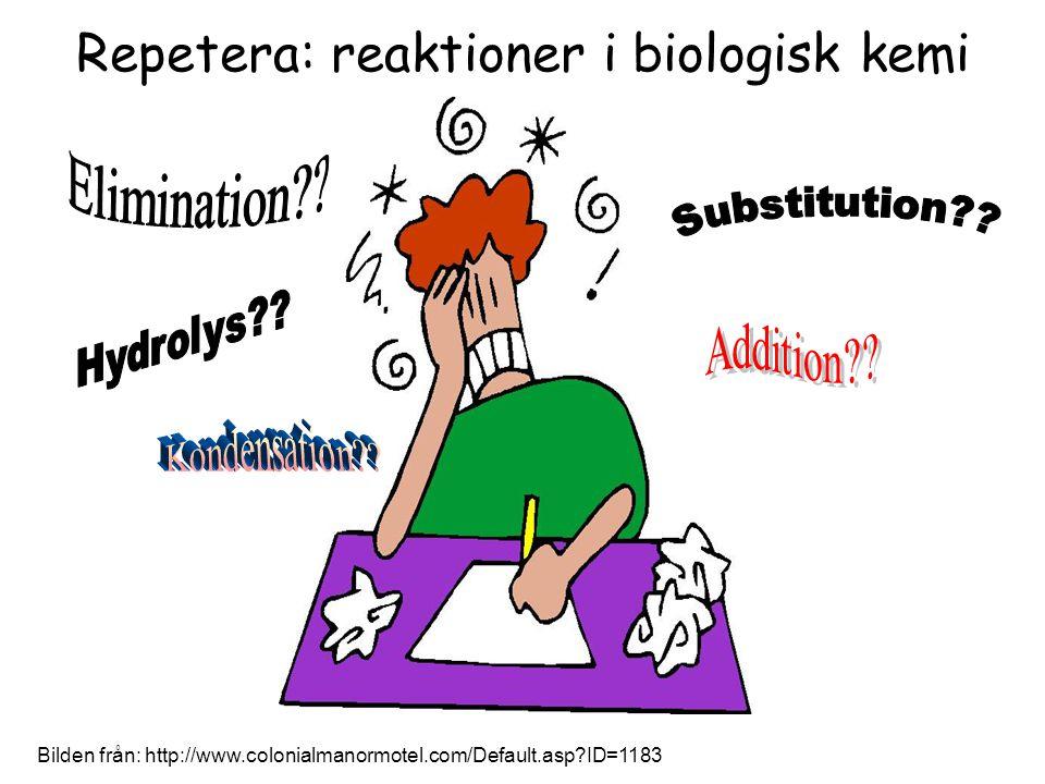 Repetera: reaktioner i biologisk kemi