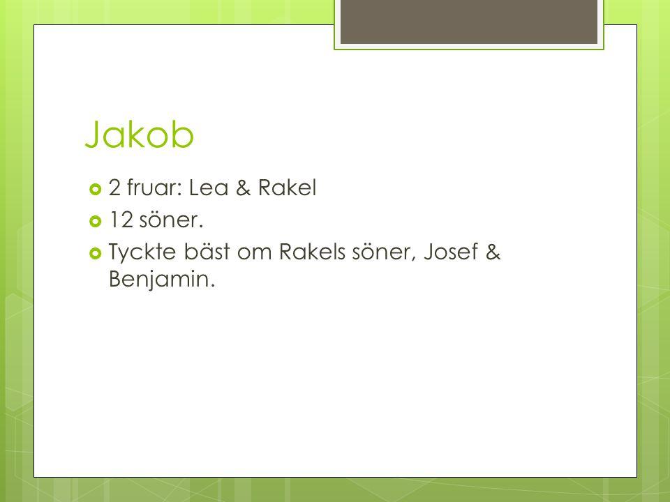 Jakob 2 fruar: Lea & Rakel 12 söner.