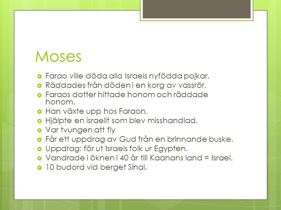 Moses Farao ville döda alla Israels nyfödda pojkar.