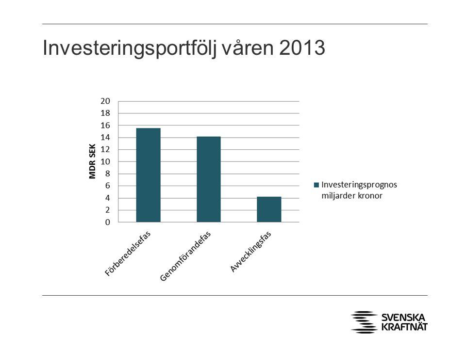 Investeringsportfölj våren 2013