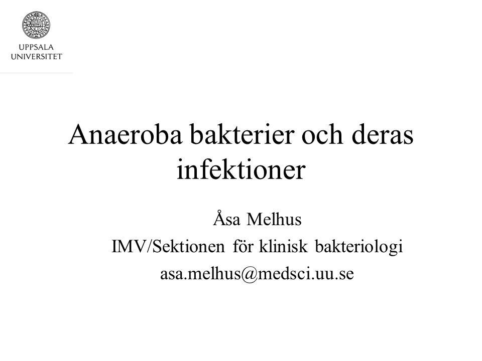 Anaeroba bakterier och deras infektioner