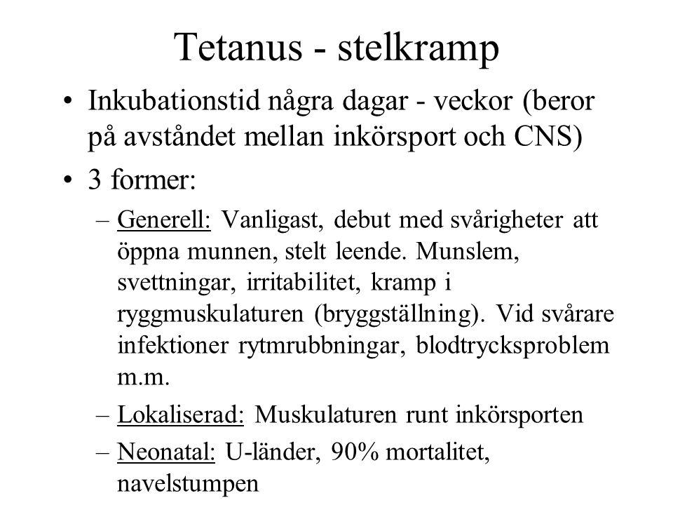 Tetanus - stelkramp Inkubationstid några dagar - veckor (beror på avståndet mellan inkörsport och CNS)