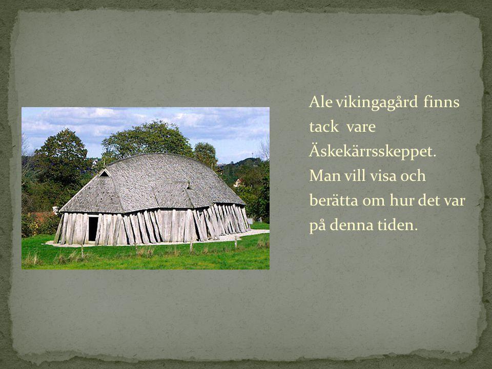 Ale vikingagård finns tack vare Äskekärrsskeppet