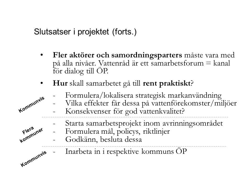 Slutsatser i projektet (forts.)