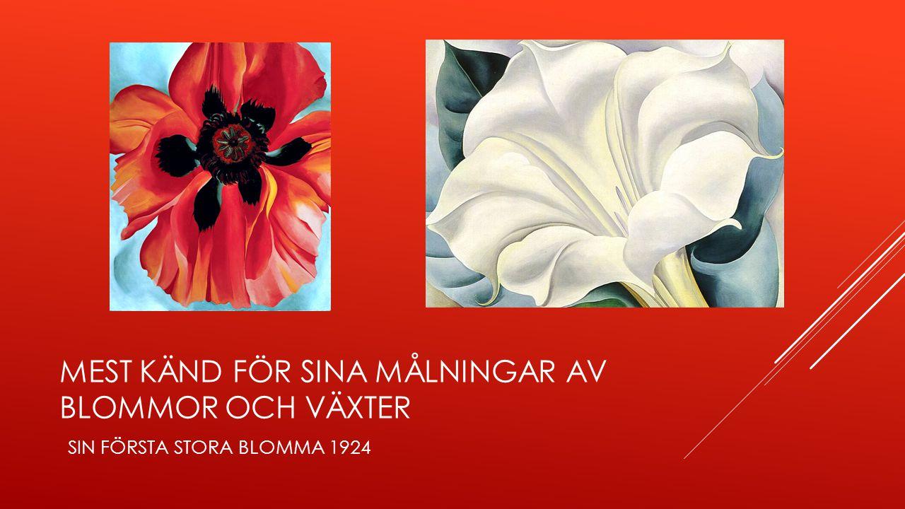 mest känd för sina målningar av blommor och växter sin första stora blomma 1924