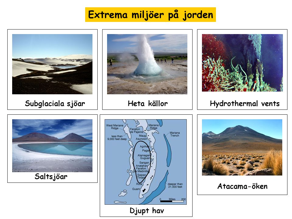 Extrema miljöer på jorden