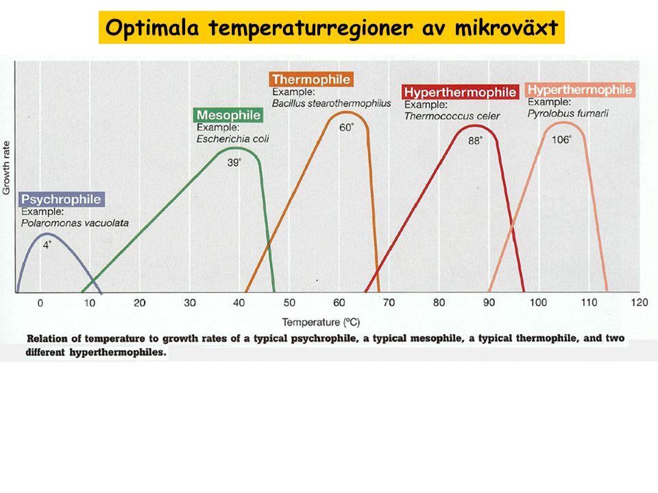 Optimala temperaturregioner av mikroväxt