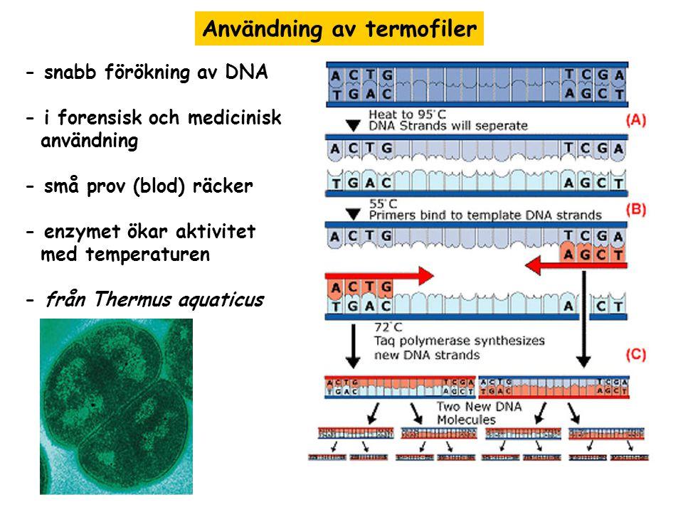 Användning av termofiler