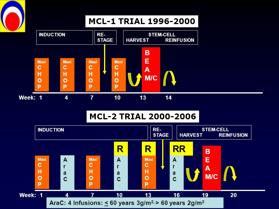 R R RR MCL-1 TRIAL 1996-2000 MCL-2 TRIAL 2000-2006 B E A M/C B E A M/C