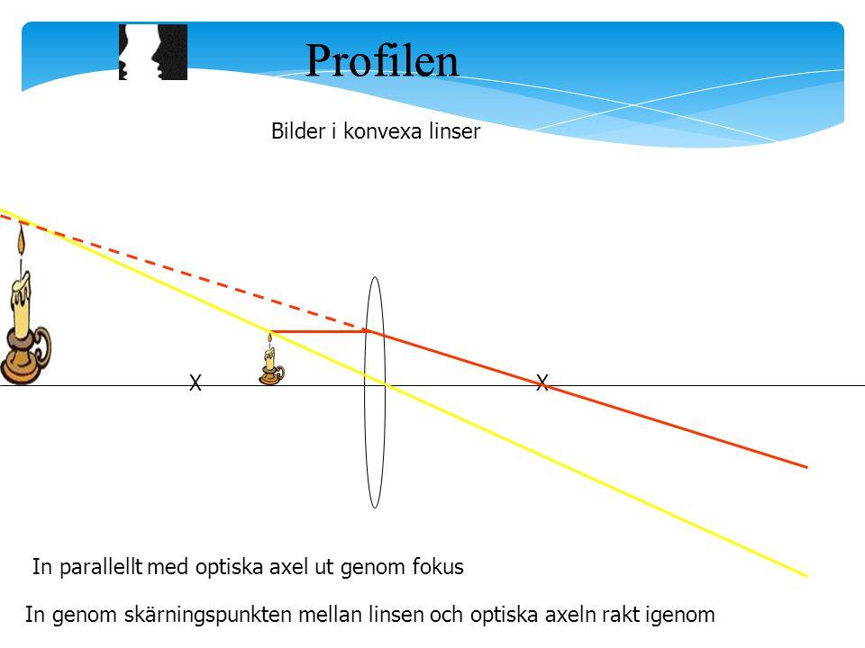Profilen Profilen Bilder i konvexa linser X X