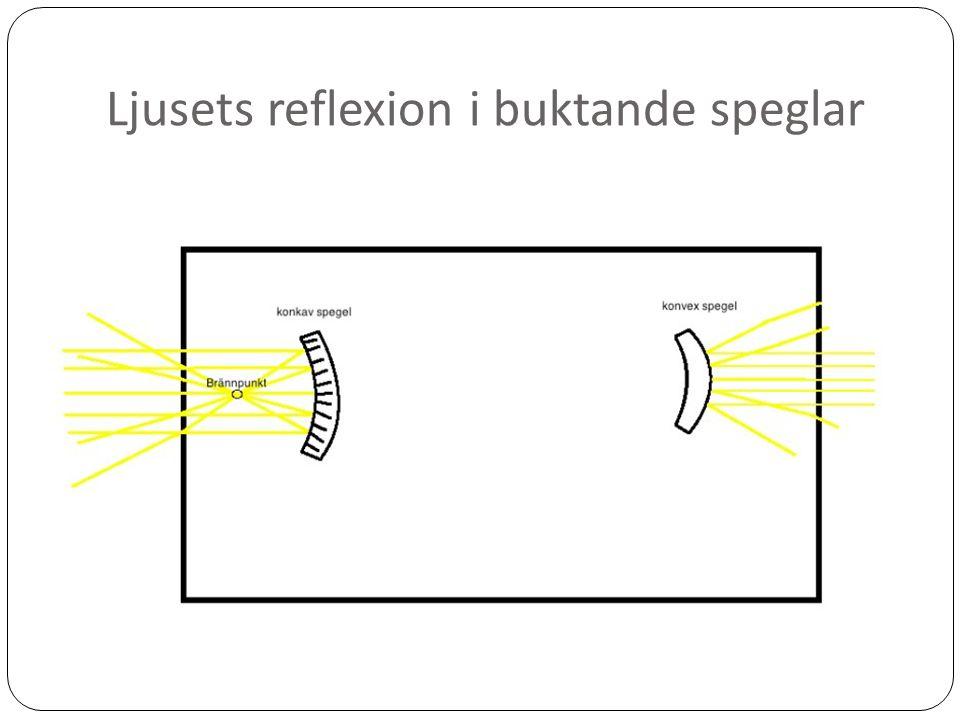 Ljusets reflexion i buktande speglar