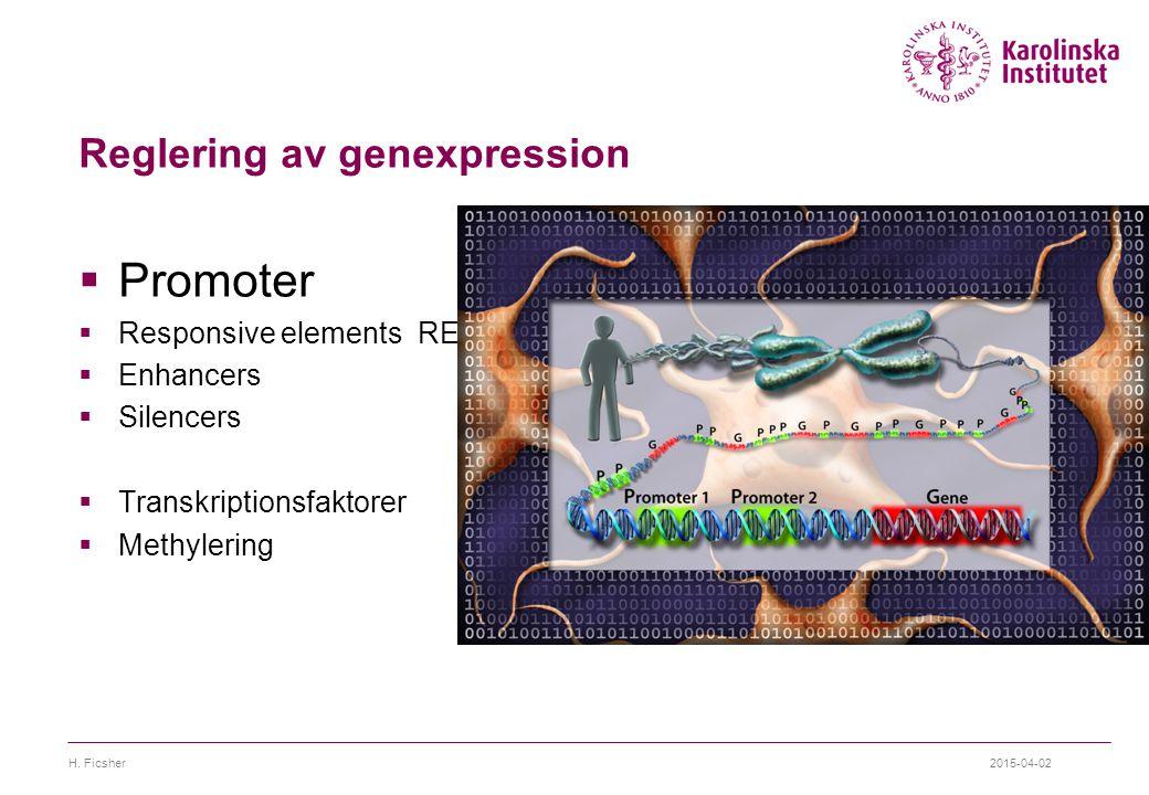 Reglering av genexpression