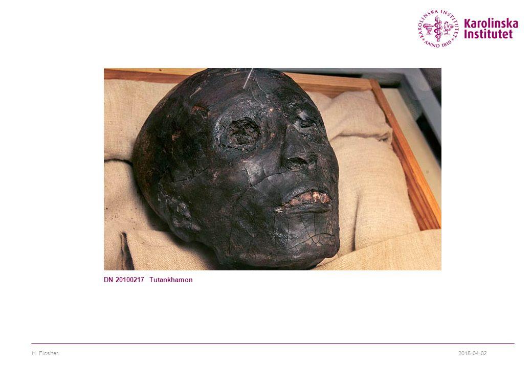 DN 20100217 Tutankhamon H. Ficsher 2017-04-09
