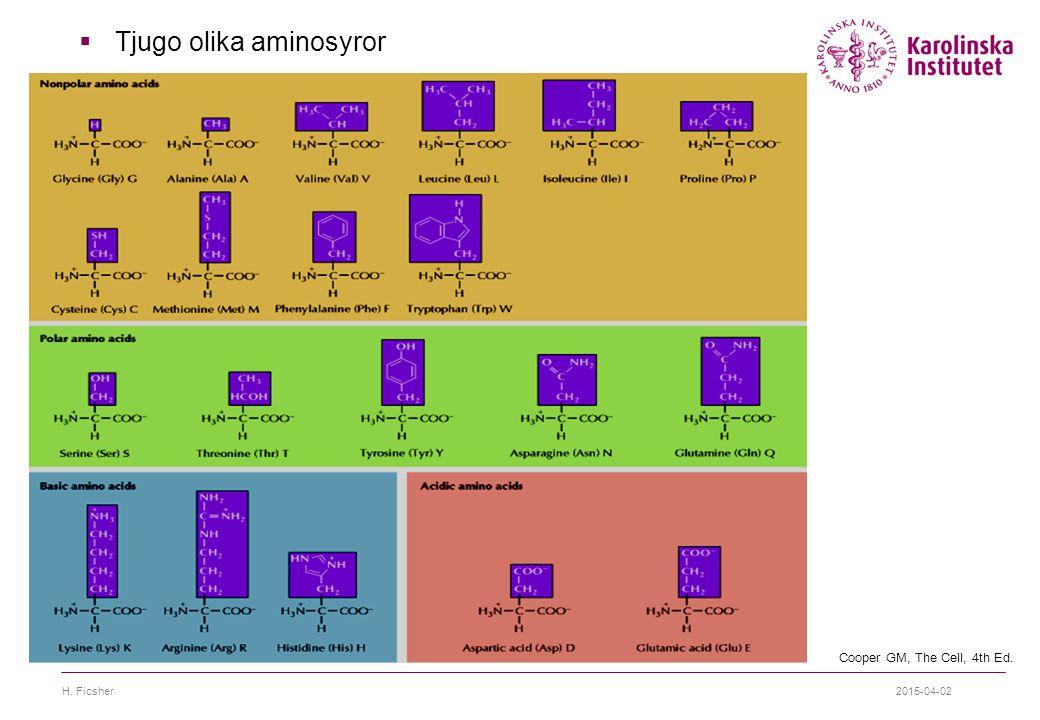 Tjugo olika aminosyror