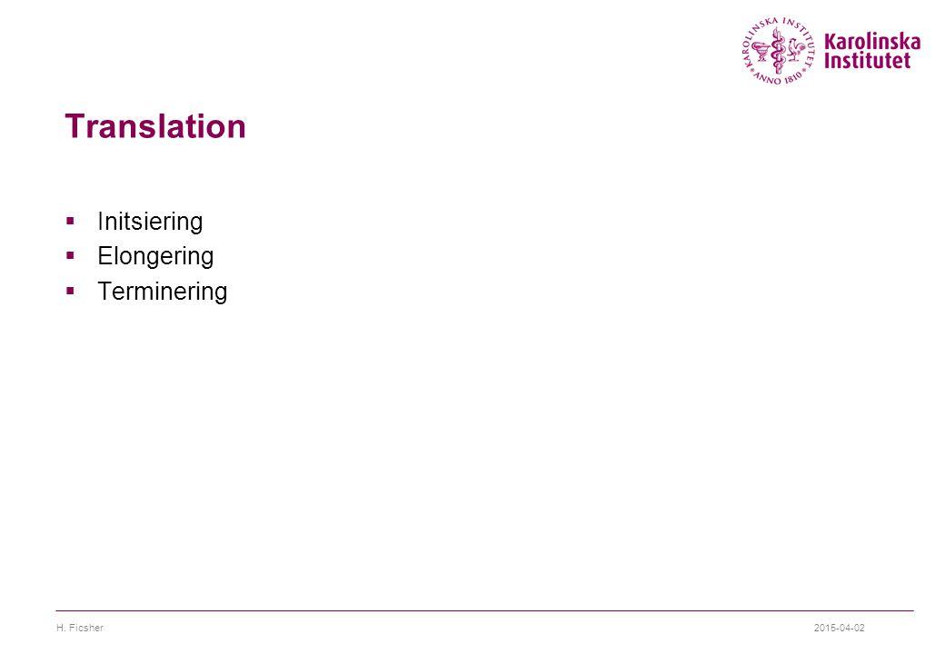 Translation Initsiering Elongering Terminering H. Ficsher 2017-04-09
