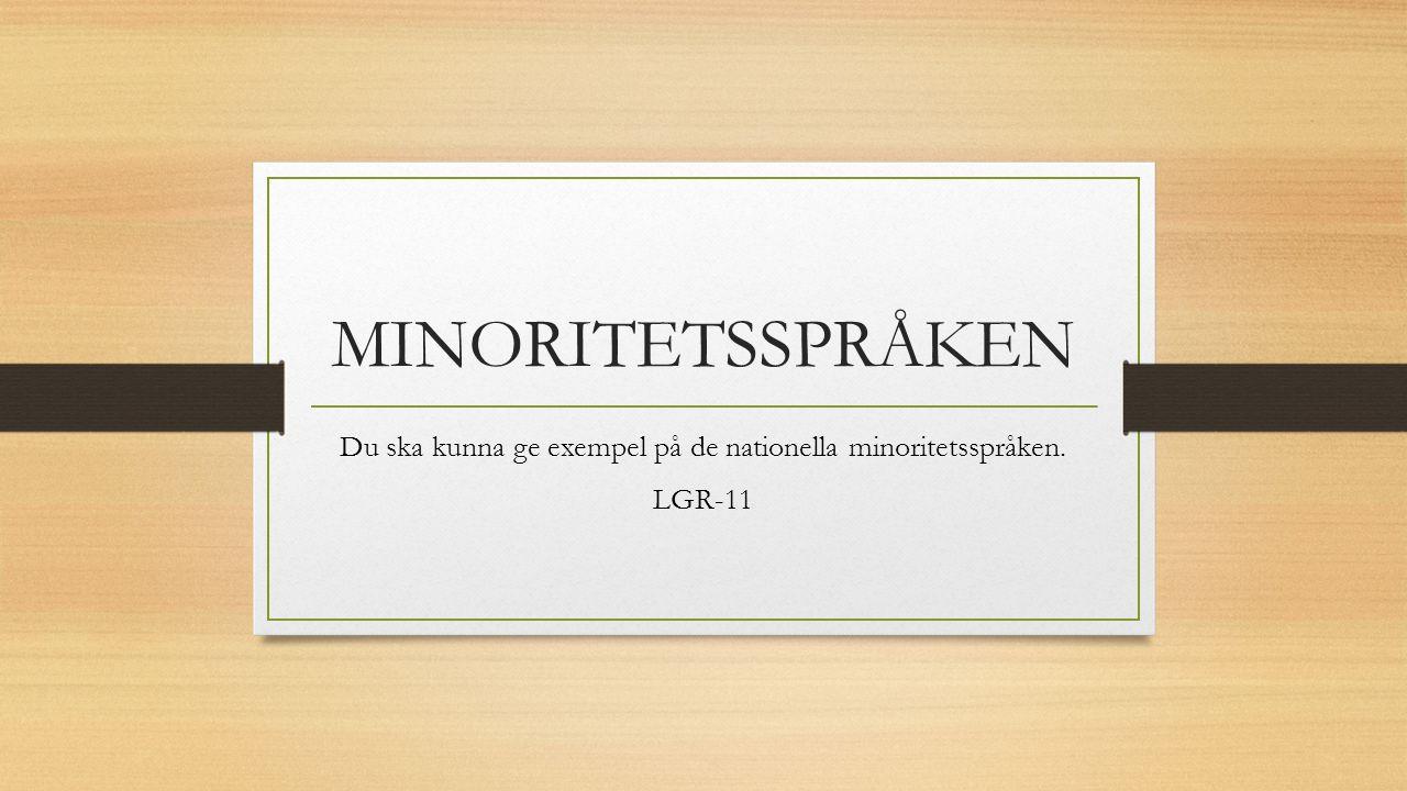 Du ska kunna ge exempel på de nationella minoritetsspråken. LGR-11