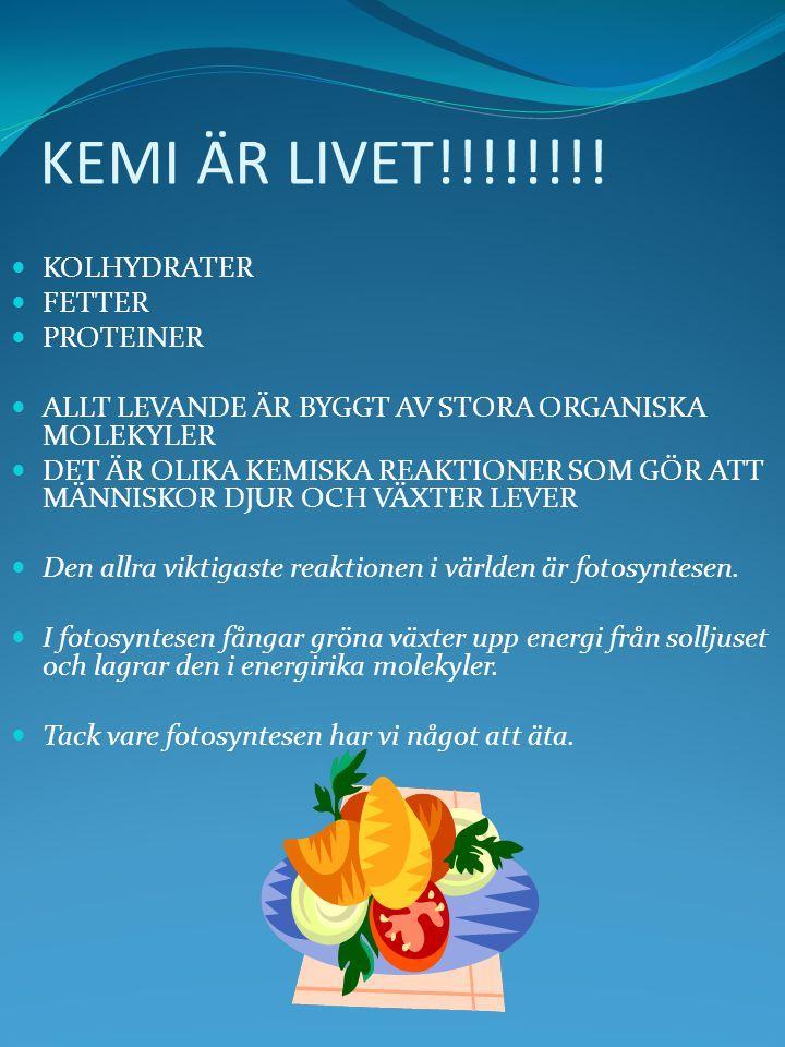 KEMI ÄR LIVET!!!!!!!! KOLHYDRATER FETTER PROTEINER