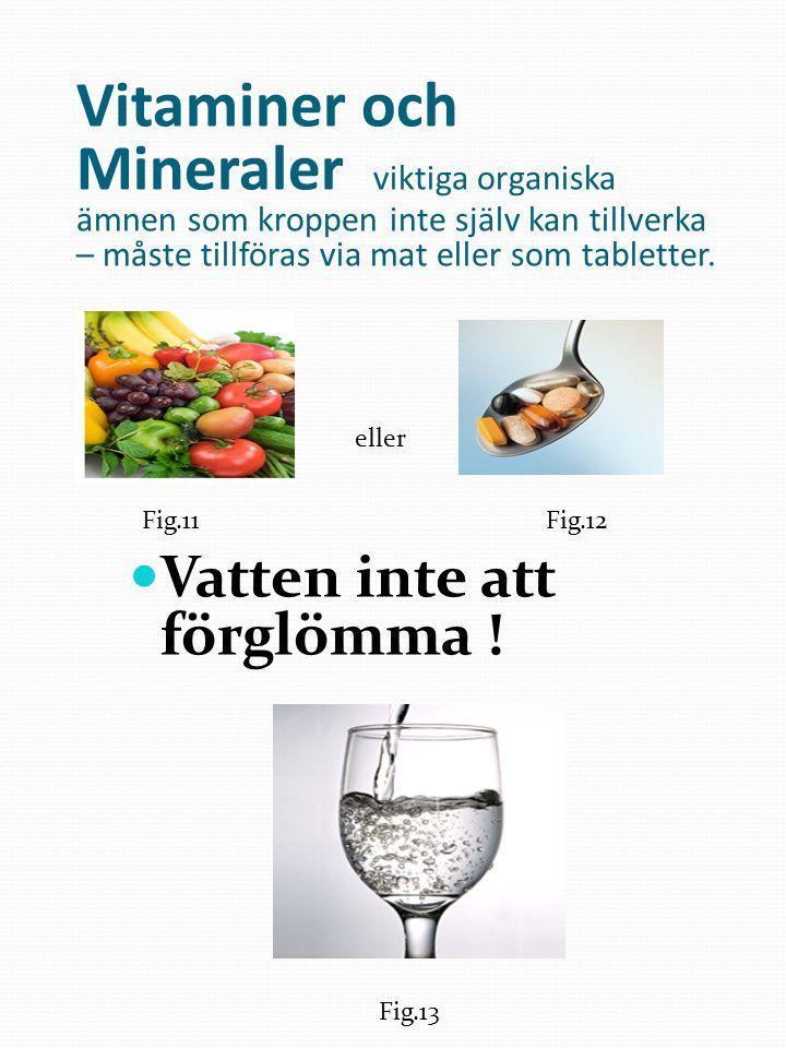 Vitaminer och Mineraler viktiga organiska ämnen som kroppen inte själv kan tillverka – måste tillföras via mat eller som tabletter.