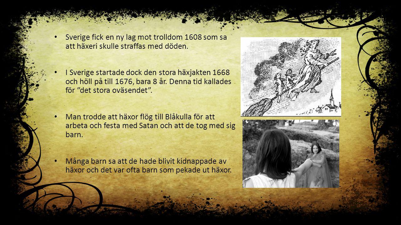 Sverige fick en ny lag mot trolldom 1608 som sa att häxeri skulle straffas med döden.