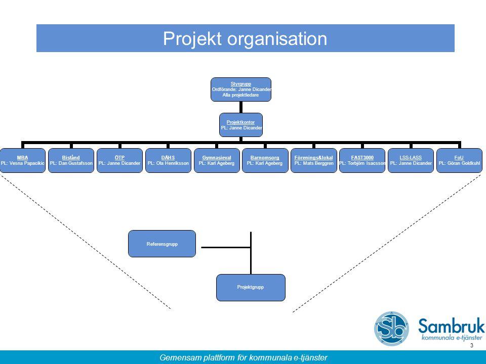 Projekt organisation Projektgrupp