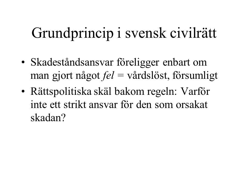 Grundprincip i svensk civilrätt