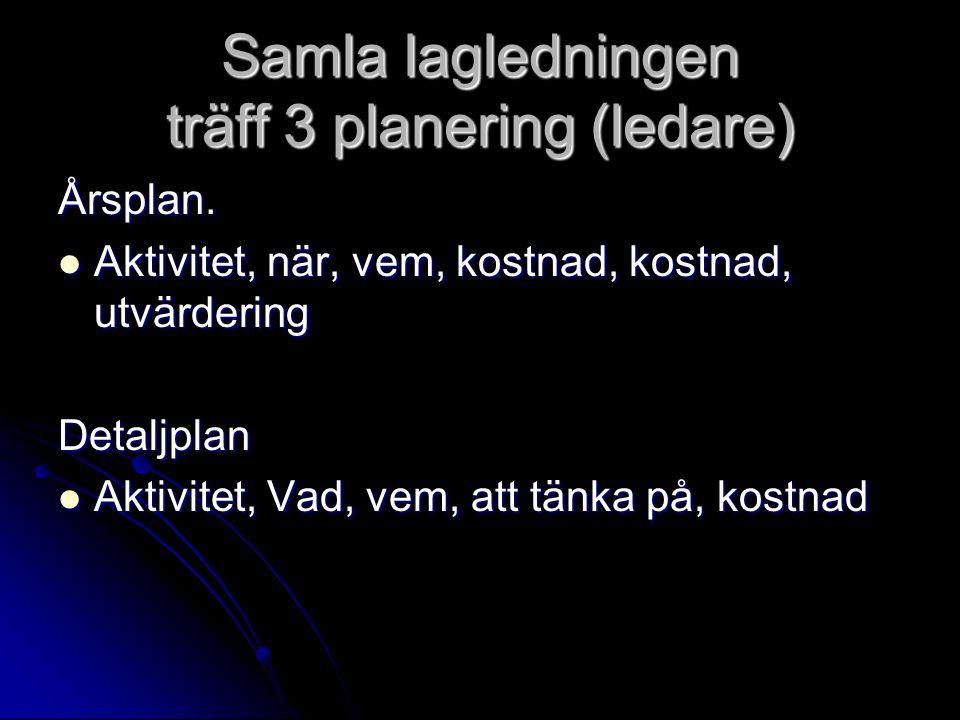 Samla lagledningen träff 3 planering (ledare)