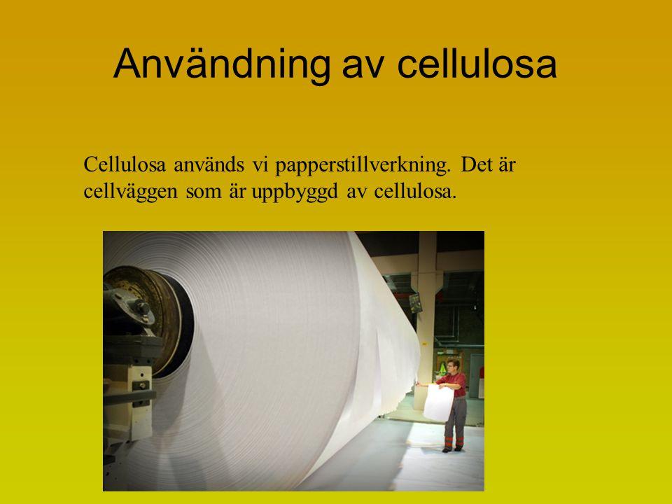 Användning av cellulosa