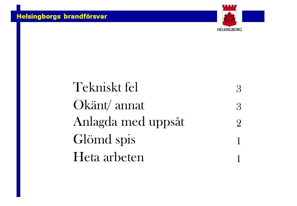 Tekniskt fel Okänt/ annat Anlagda med uppsåt Glömd spis Heta arbeten 3