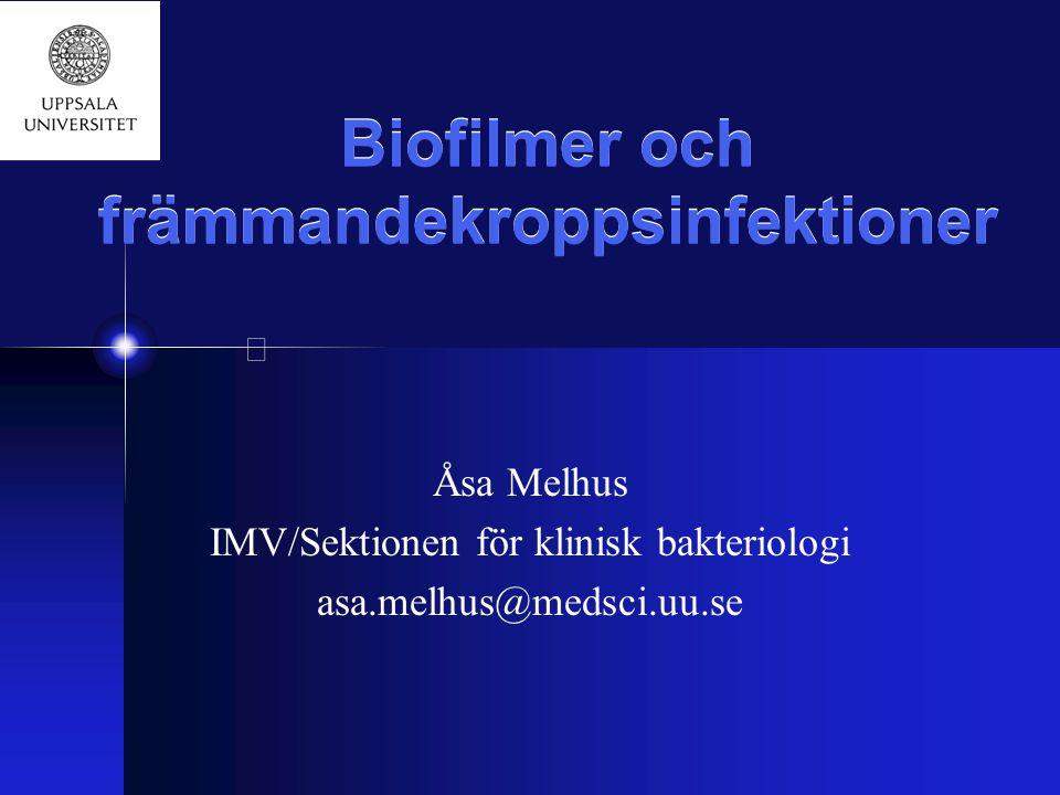 Biofilmer och främmandekroppsinfektioner