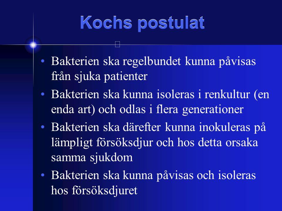 Kochs postulat Bakterien ska regelbundet kunna påvisas från sjuka patienter.