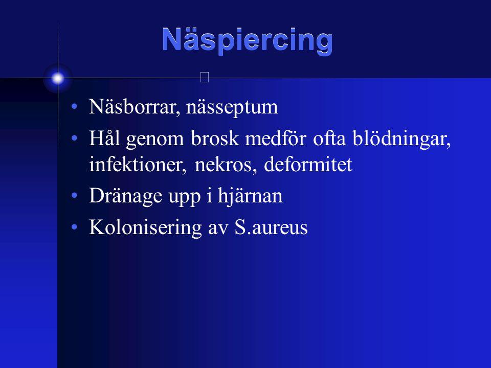 Näspiercing Näsborrar, nässeptum