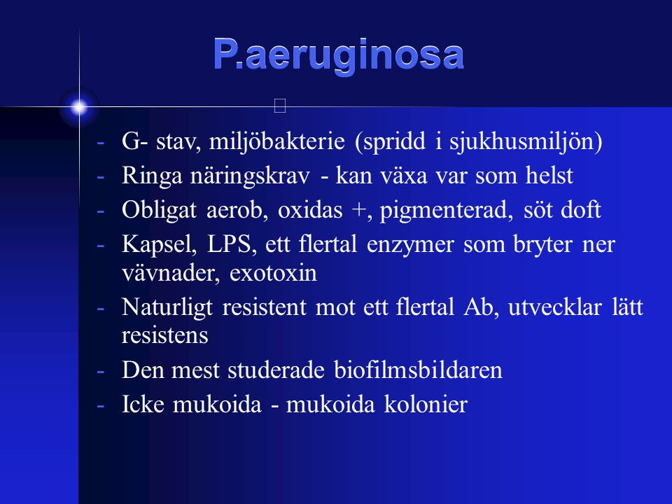 P.aeruginosa G- stav, miljöbakterie (spridd i sjukhusmiljön)