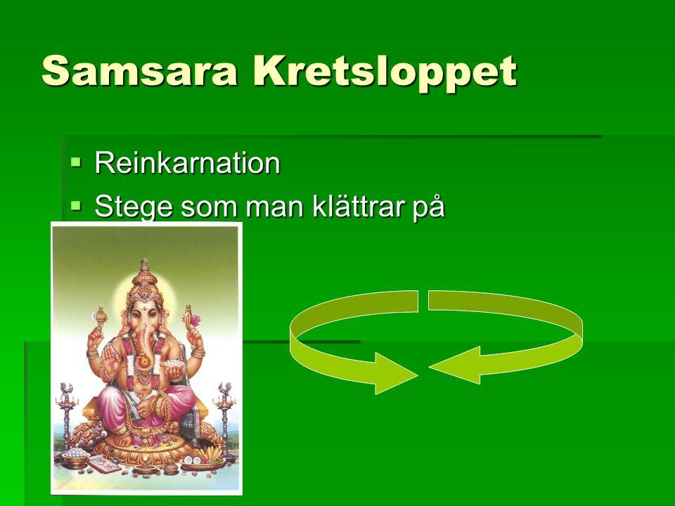 Samsara Kretsloppet Reinkarnation Stege som man klättrar på