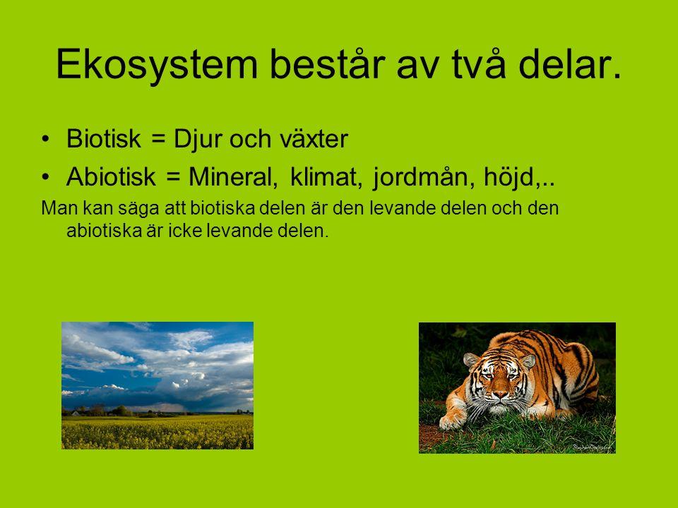 Ekosystem består av två delar.
