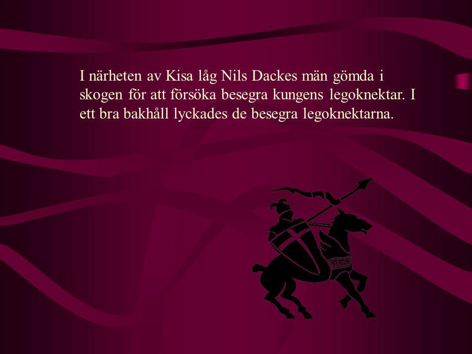 I närheten av Kisa låg Nils Dackes män gömda i skogen för att försöka besegra kungens legoknektar.