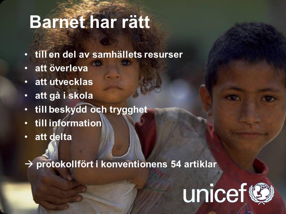 Barnet har rätt till en del av samhällets resurser att överleva
