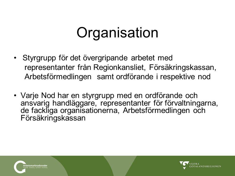 Organisation Styrgrupp för det övergripande arbetet med