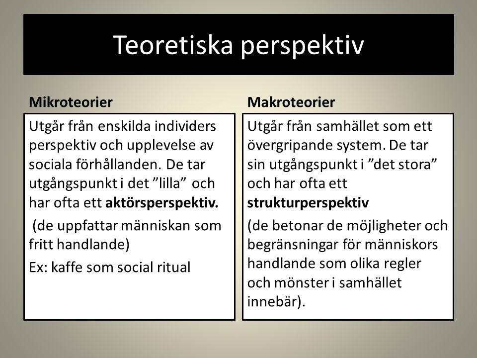 Teoretiska perspektiv