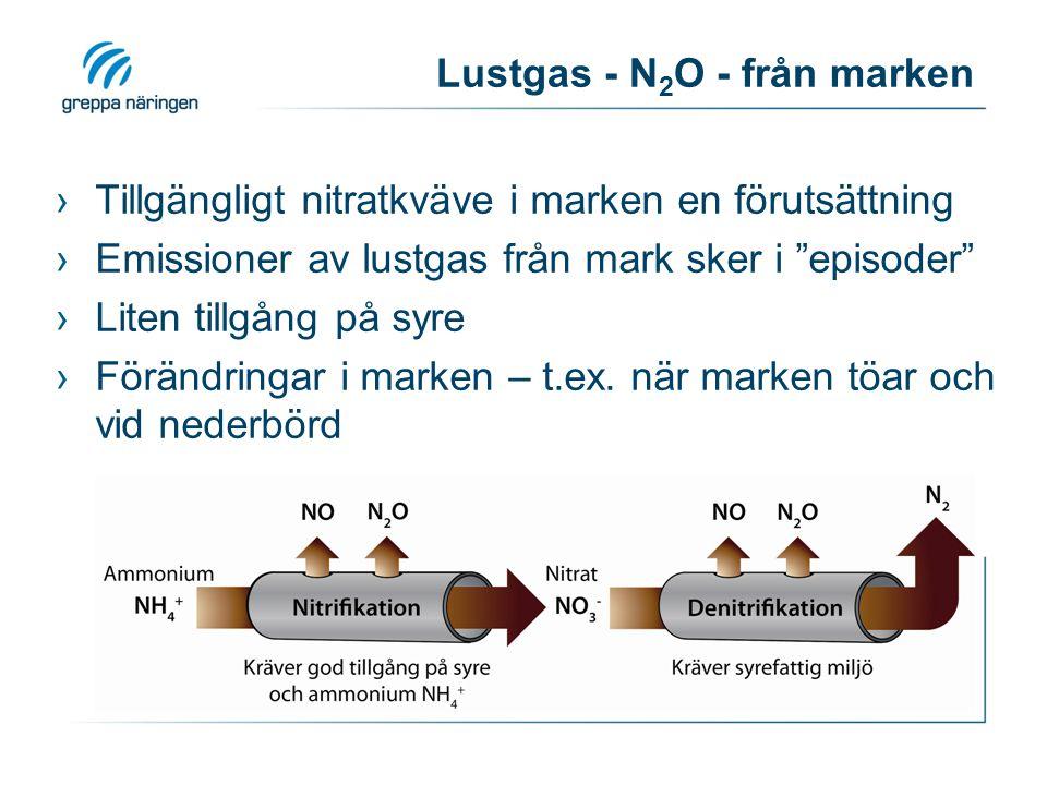 Lustgas - N2O - från marken
